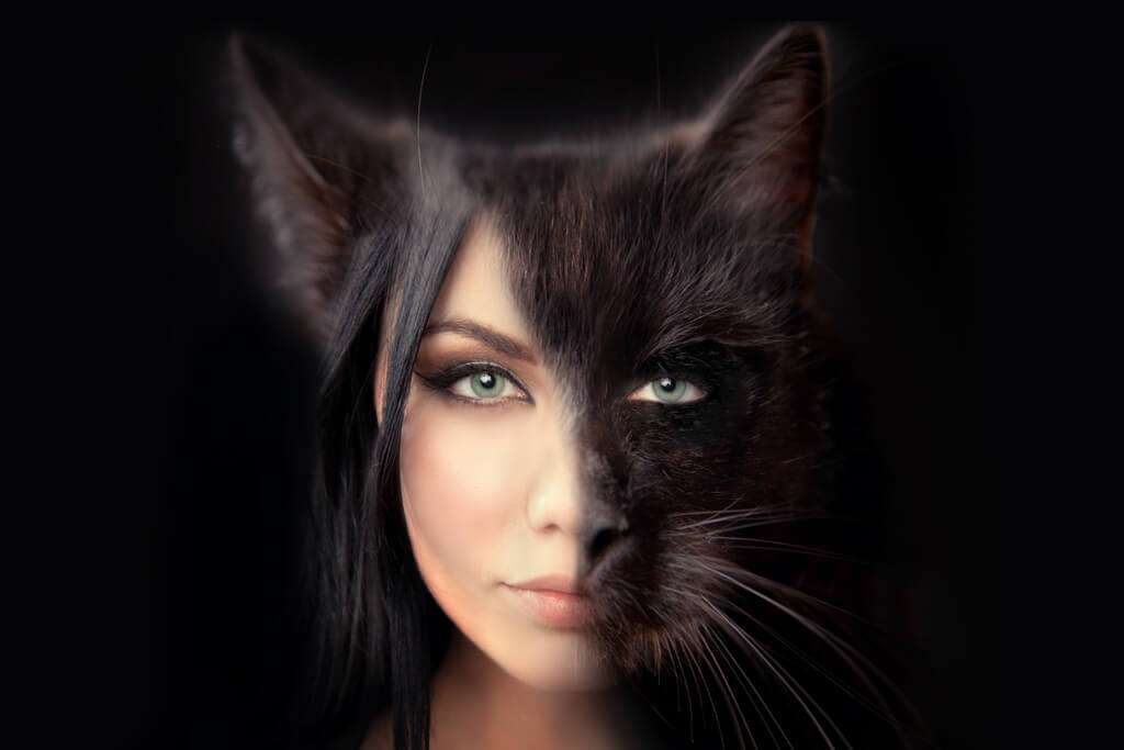 cat women face and fur commercial photography photoshop retouch editing